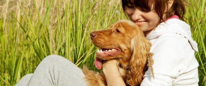 manfaat memelihara hewan simasnet